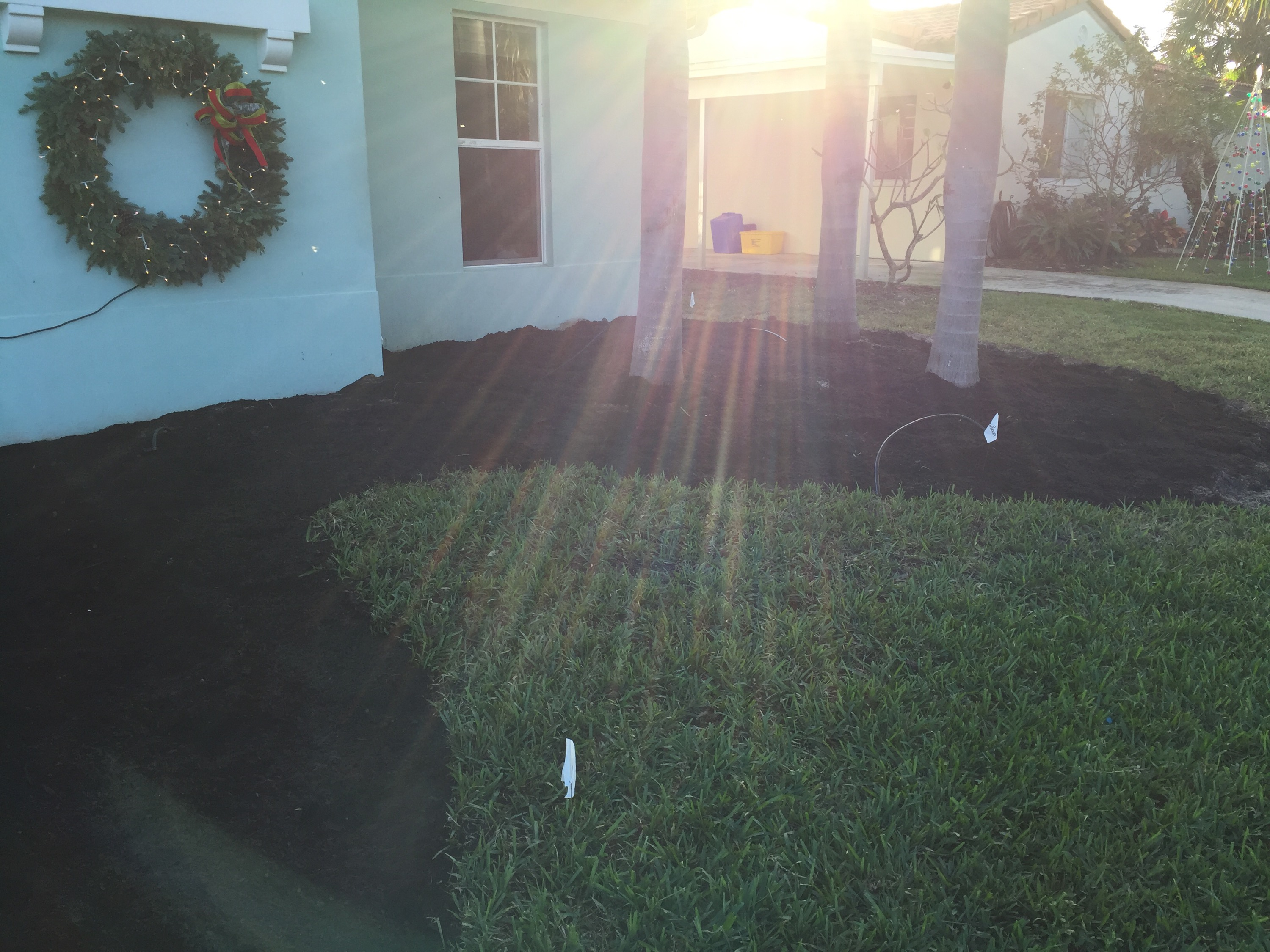New Sod, New Landscaping | GoTheNextLevel