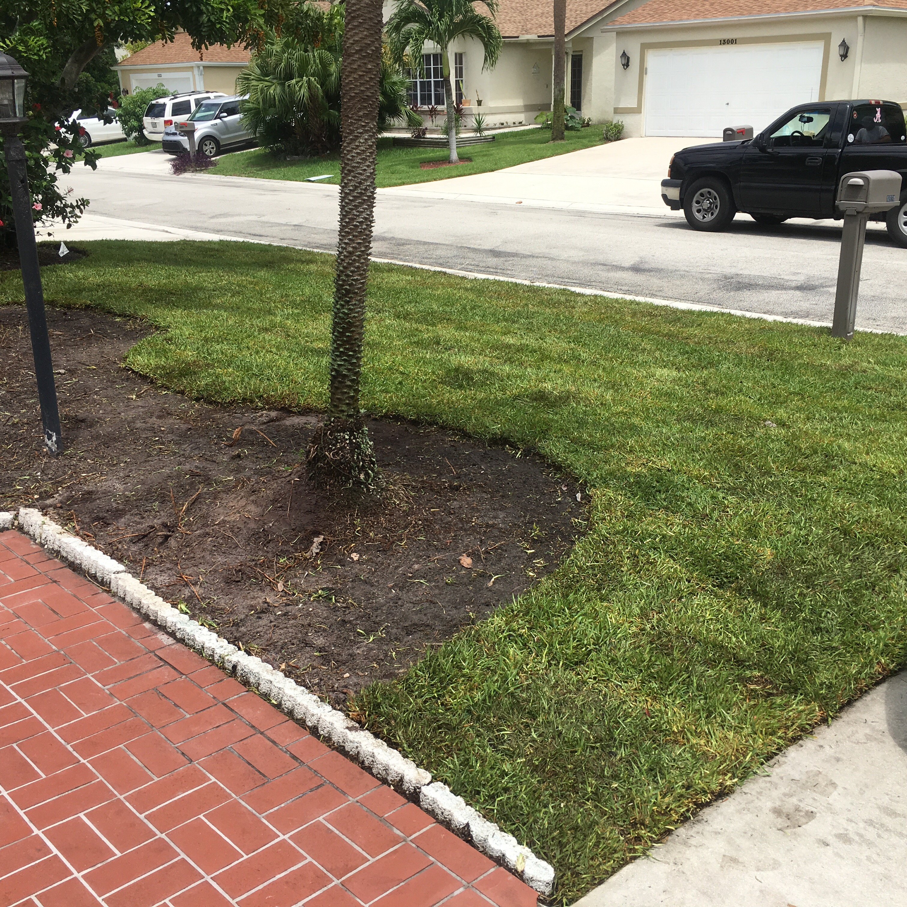 Wellington sod next level landscaping and maintenance for Landscaping wellington